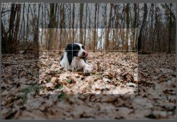 Recenzja Leica Q2